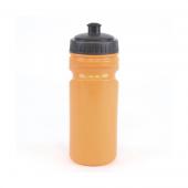 Lioness Sports Bottle